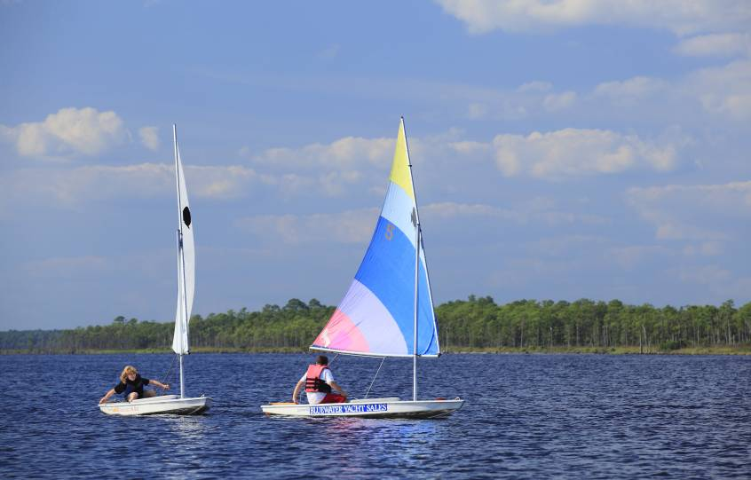 Sunfish Sailboats Race