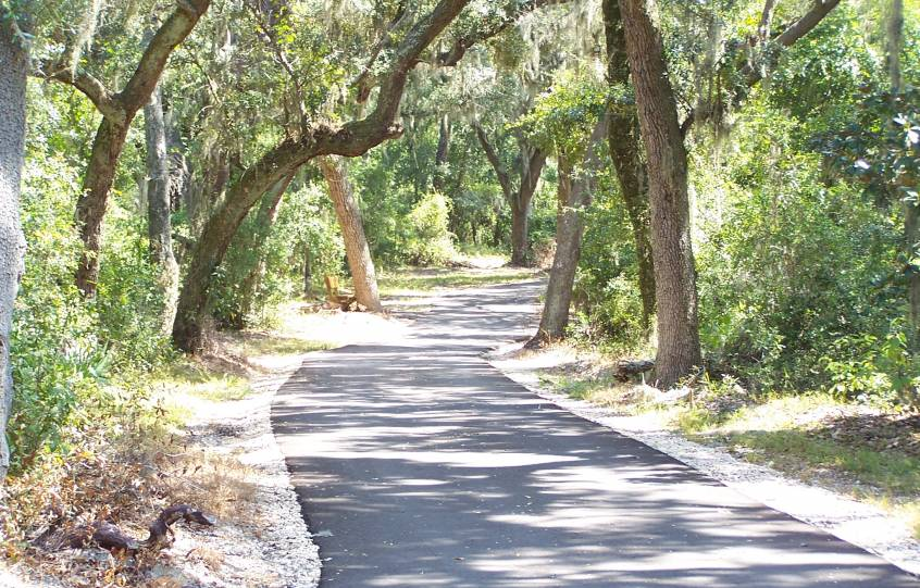 Paved path with live oaks overhanging with Spanish Moss on the Backcountry Trail