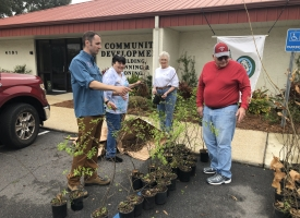 2019 Orange Beach Arbor Day tree giveaway