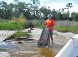 Orange Beach Waterways and Shoreline Enhancement Program